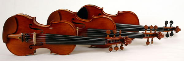 barbera electric violins