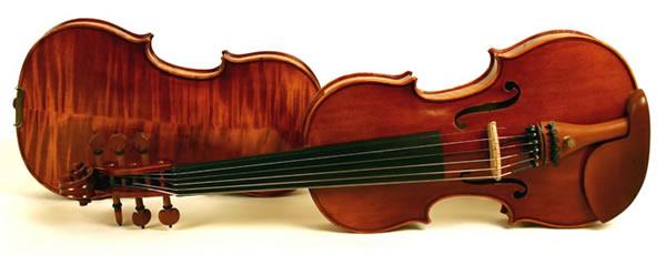 over 20 years of craftsmanship in electric violins and acoustic electric violins. Black Bedroom Furniture Sets. Home Design Ideas